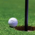 Штучна трава Moongrass pro-Golf - Висока якість за найкращою ціною в Україні зображення 3.