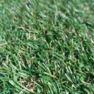 Штучна трава Natura GC-21 - Висока якість за найкращою ціною в Україні зображення 2.