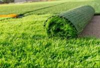 Ковровое покрытие  «Трава»