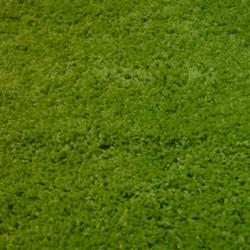 Высоковорсный ковер Himalaya A703A Eucoliptus  - высокое качество по лучшей цене в Украине