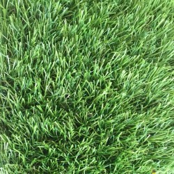 Штучна трава Orotex Nil  - Висока якість за найкращою ціною в Україні