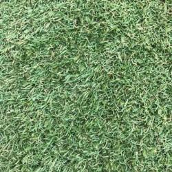Штучна трава Arcadia 6909  - Висока якість за найкращою ціною в Україні