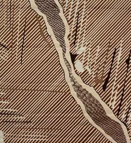Акриловий килим Aden 3119A