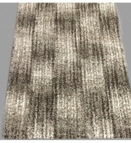 Високоворсний килим Asti 23005/12