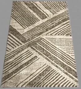 Високоворсний килим Asti 23009/12