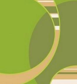 Синтетичний килим Elana (Фреза)  4858 e.green-l.green