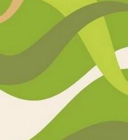 Синтетический ковер Elana 4878 e.green-l.green