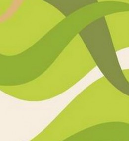 Синтетический ковер Elana 4878 f.green-l.green