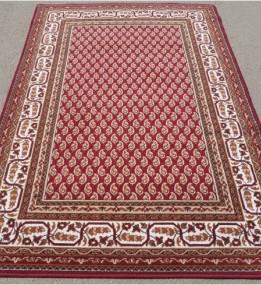 Шерстяний килим 122269 - высокое качество по лучшей цене в Украине.