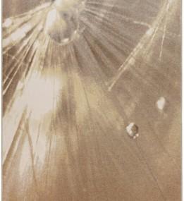 Шерстяной ковер ALABASTER Vorma Cocoa