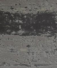 Акриловый ковер 128891 2.00x2.90 овал