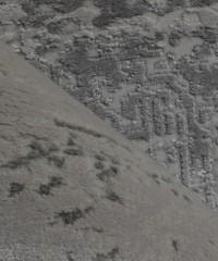 Акриловый ковер 128891 1.60х2.30 овал
