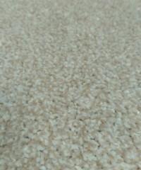 Бытовой ковролин 128874, 2.00х4.95