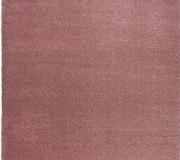 Высоковорсный ковер Delicate Rose - высокое качество по лучшей цене в Украине.