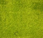 Высоковорсная ковровая дорожка Shaggy Lux 1000A yesil - высокое качество по лучшей цене в Украине.