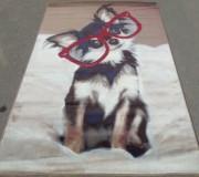 Ковер картина с животными Graffiti 1623-g610 - высокое качество по лучшей цене в Украине.