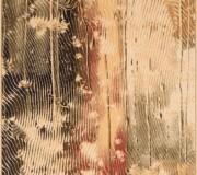Шерстяной ковер Isfahan Ornan Sahara - высокое качество по лучшей цене в Украине.