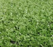 Искусственная трава Moongrass pro-Golf АКЦИЯ - высокое качество по лучшей цене в Украине.
