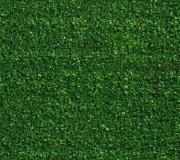 Искусственная трава Orotex Squash - высокое качество по лучшей цене в Украине.
