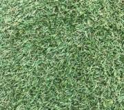 Искусственная трава Arcadia 6909 - высокое качество по лучшей цене в Украине.