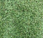 Искусственная трава RIVIERA - высокое качество по лучшей цене в Украине.