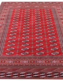 Шерстяной ковер Nain 6211-677 red - высокое качество по лучшей цене в Украине.