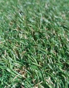 Искусственная трава Natura GC-21 - высокое качество по лучшей цене в Украине.