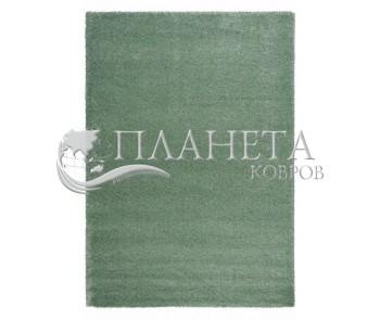 Высоковорсный ковер Delicate L.Green - высокое качество по лучшей цене в Украине