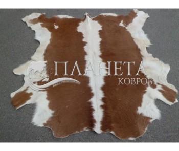 Шкура BOGDAN brown-white - высокое качество по лучшей цене в Украине