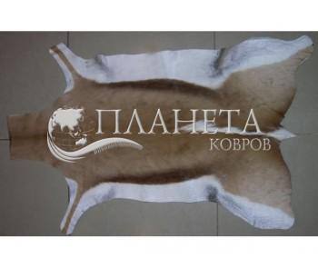 Шкура газели GAZELA NATURAL GZ01 ANTIDORCAS MARSUPIALIS - высокое качество по лучшей цене в Украине