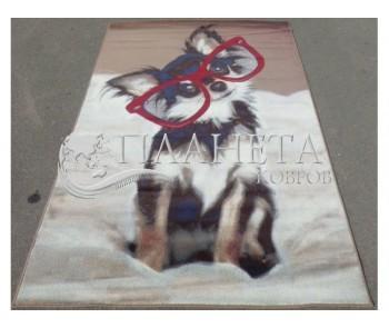 Синтетический ковер Graffiti 1623-g610 - высокое качество по лучшей цене в Украине