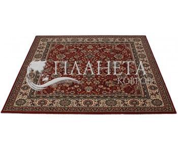 Шерстяной ковер Royal 1561-507 red - высокое качество по лучшей цене в Украине