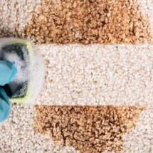 Догляд за килимовими виробами