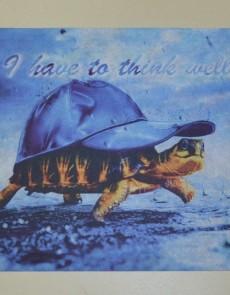 Коврик для входа Panorama turtle - высокое качество по лучшей цене в Украине.