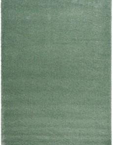 Высоковорсный ковер Delicate L.Green - высокое качество по лучшей цене в Украине.