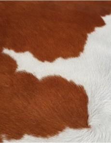 Шкура BOGDAN Brown-White K-10 - высокое качество по лучшей цене в Украине.