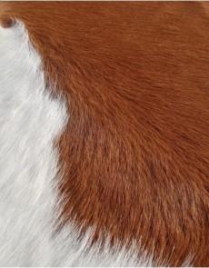 Шкіра BOGDAN Brown-White K-11 - высокое качество по лучшей цене в Украине.