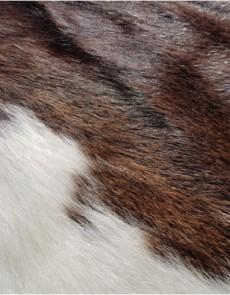 Шкура BOGDAN Brown-White K-8 - высокое качество по лучшей цене в Украине.