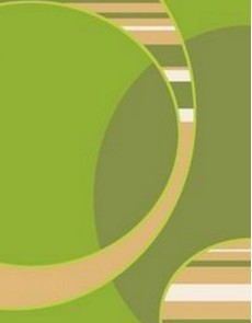 Синтетический ковер Elana 4858 e.green-l.green - высокое качество по лучшей цене в Украине.