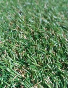 Штучна трава Natura GC-21 - высокое качество по лучшей цене в Украине.