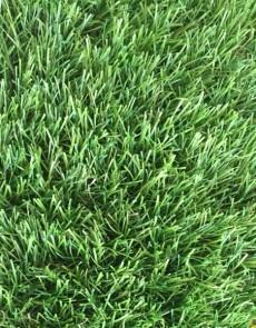 Искусственная трава Orotex Nil - высокое качество по лучшей цене в Украине.