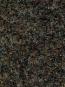 Комерційний ковролін Primavera 7745 - высокое качество по лучшей цене в Украине - изображение 2.